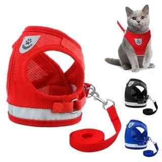 Cat and dog harness set