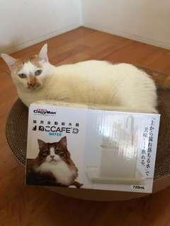 🚚 貓用自動給水器ねこCAFE