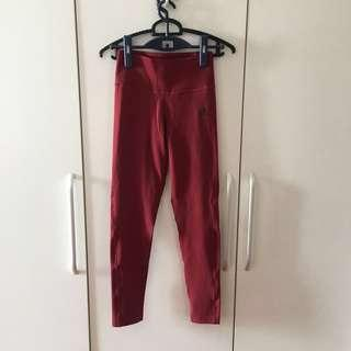 Adidas Climalite Ultimate Tights in size M
