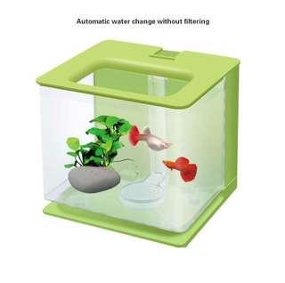 🚚 Mini fish tank
