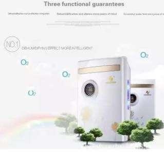 🚚 AIRPLUS 2.2L Home Air Semiconductor Dehumidifier Moisture Absorbing Air Purify White US Plug - intl