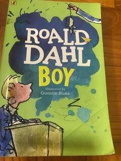 Roald Dahl Boy