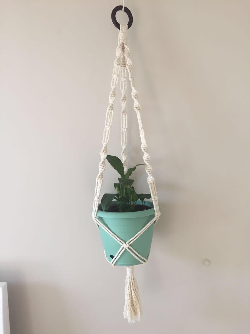 Plant Hanger (cream)