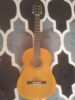 Clasical Guitar (acoustic - nylon string)