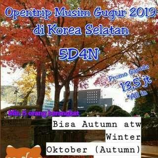 5D4N ke Seoul Korea