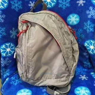 Eddie Bauer Stowaway Packable/Foldable Sling Bag