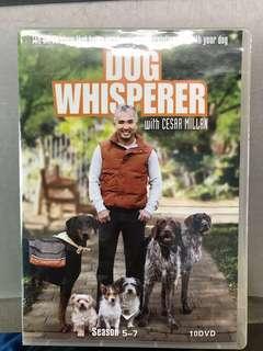 Dog Whisperer with Cesar Millar