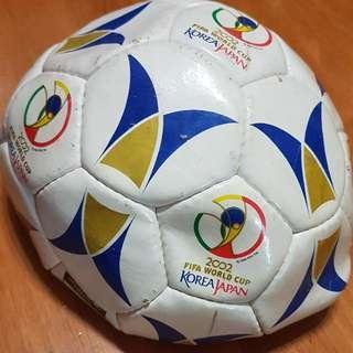 2002 FIFA Soccer/Football