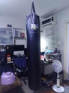 Everlast Muay Thai Punching Bag