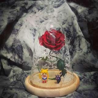 紅玫瑰保鮮花 配 美少女戰士 露娜 亞提密斯 閃燈底座