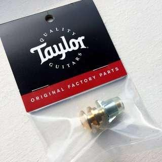 Taylor Acoustic Guitar - Gold End Pin