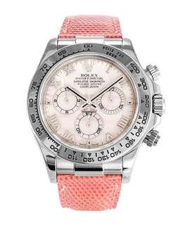 Rolex Daytona 116519beach 粉紅美人 四大美人