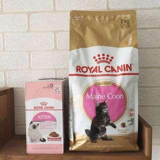 Royal Canin Maine Coon Kitten Dry + Wet Food Set