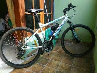 Sepeda mtb wimcycle
