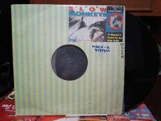 Vinyl lp records