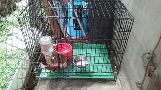 🚚 狗籠(8成新)+外出側背包+餐盤x3+喝水器+狗鏈含繩子x3+繩子x1+狗食(牛肉口味)10kg