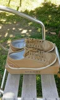 Lacoste shoes (leather & suede)