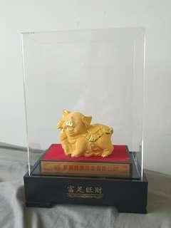 金豬 Gold pig