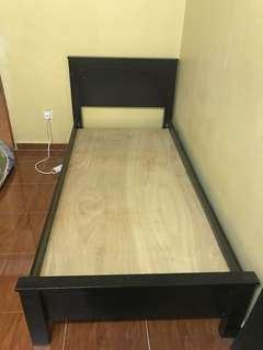 Single bed / Katil single
