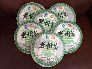 聽雨樓:普洱生茶:2009年 香港龍茶莊監製老樹茶