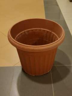 Big Plant Pot