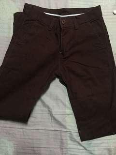 Maroon Pants / Chinos / Trousers