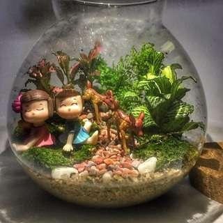 🚚 Terrarium-Miniature Garden With Light