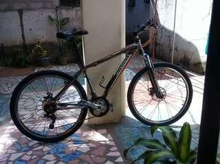 3800 Bike for sale