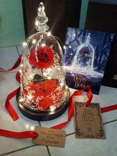 Preserved Rose Flower with Glass Cover (Pre-order)