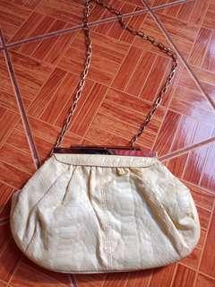 ALDO clutch..sling bag