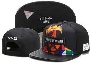 🚚 Snapback Caps