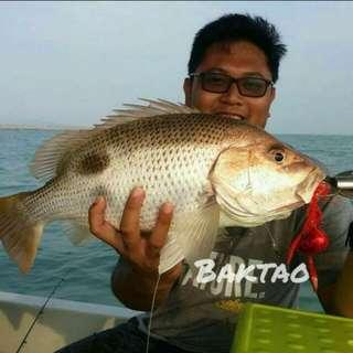 Red Mouse Madai 150g for fishing