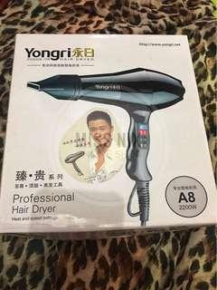 Yongri Hair Dryer (Hot and Cold)