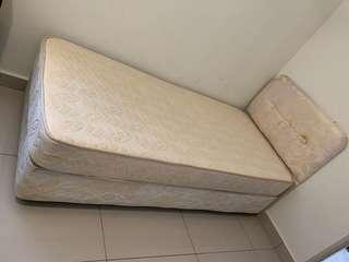 Branded Single Bed ( Goodnight Brand ) with Mattress