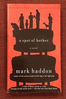 A Spot of Brother by Mark Haddon