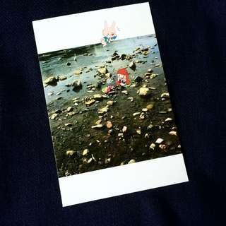 Cute Mermaid Rabbit Hermit Crab Japan Postcard anime