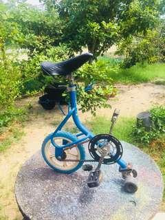 skate bike lerun