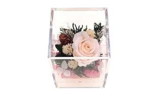Preserved Flower Arrangement in Acrylic Box / Great Flower Gift for Home & Office Decor