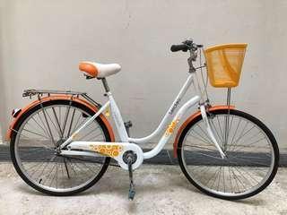 Lady bike with basket