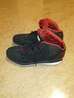 🚚 Derrick Rose Basketball Shoes