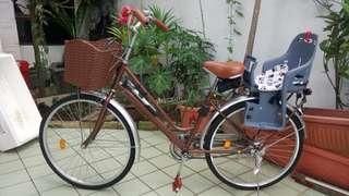 Dutch style single speed city bike bicycle