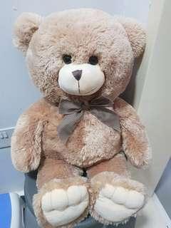 Teddy Bear 60cm