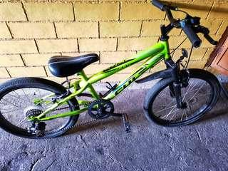 "Cult 20"" Mountain Bike 7 speed"