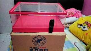 Fruit box, kotak buah