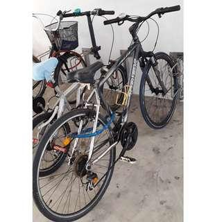 Admiralty famous brand (trek) bike for sell at admiralty