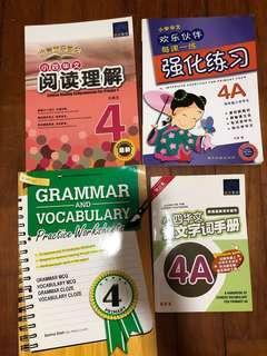 P4 assessment books x4