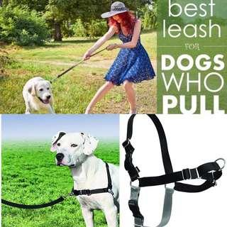 🚚 STOP LEASH PULLING! Brand New Petsafe Easy Walk Front Leading Harness