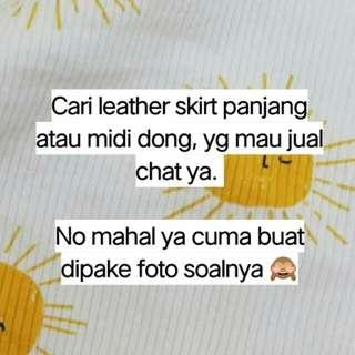 Cari leather skirt