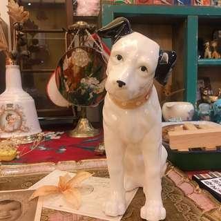 日本帶回 中古品 HMV 狗 JVC VICTOR 罕有 陶瓷 冰裂紋 22公分 大隻 勝利狗