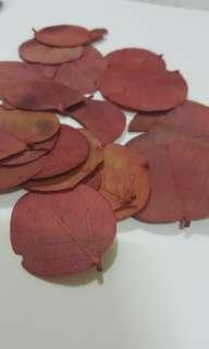 Dried Red Leaves (3 x 7g Packets) #MakeSpaceForLove